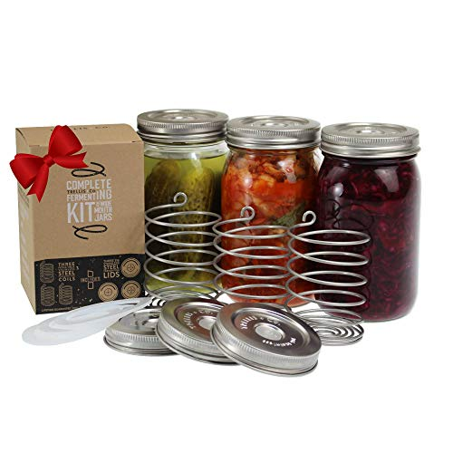 Trellis + Co. Stainless Steel Fermentation Jar Kit | 3 Waterless Fermenter Airlock Lids & 3 Pickle Helix Fermentation Weights, For Wide Mouth Mason Jars | Recipe eBook Included With Fermenting Kit