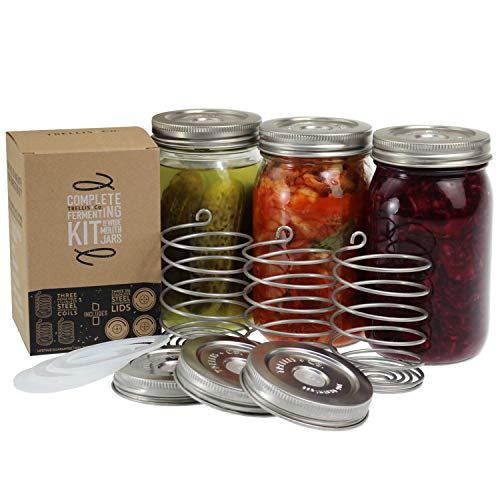 Trellis + Co. Stainless Steel PickleHelix Coils, Fermentation Weights | 3 Pack | For Wide Mouth Mason Jar Fermenting | Best Way To Hold Vegetables Under Water For Fermentation