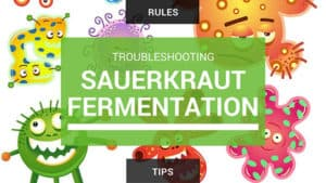 Troubleshoot tips & rules for moldy sauerkraut. | makesauerkraut.com