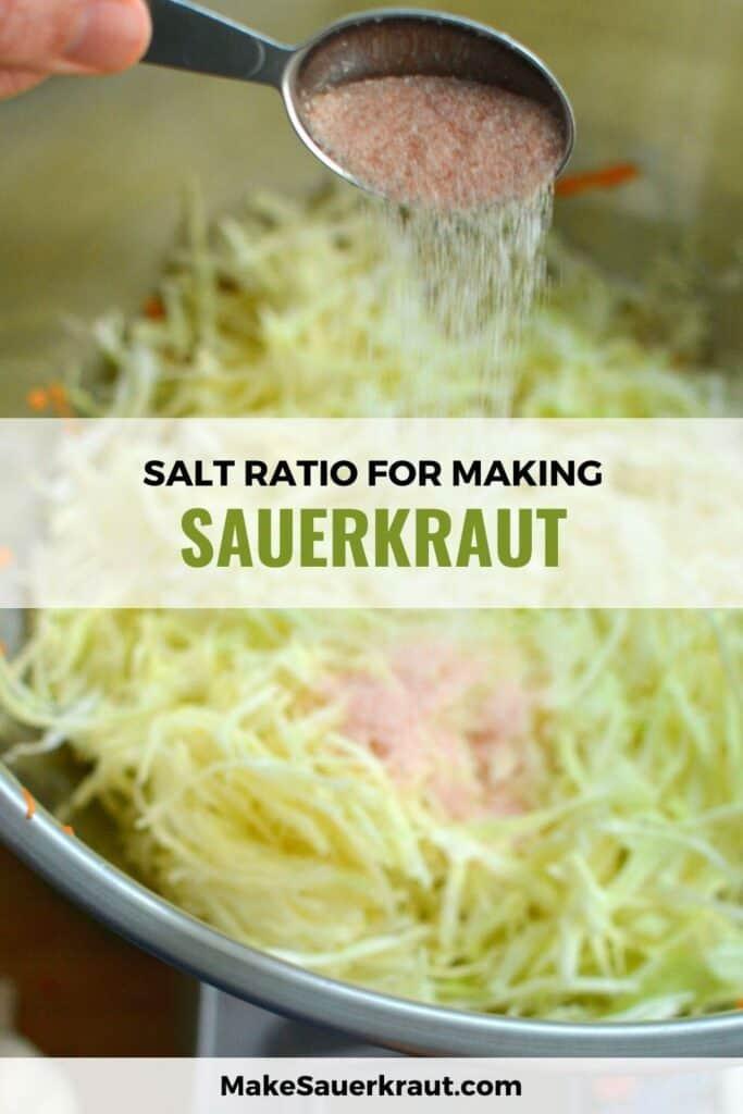 Salt ratio for making sauerkraut