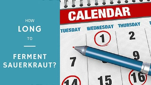 How long do you ferment sauerkraut?