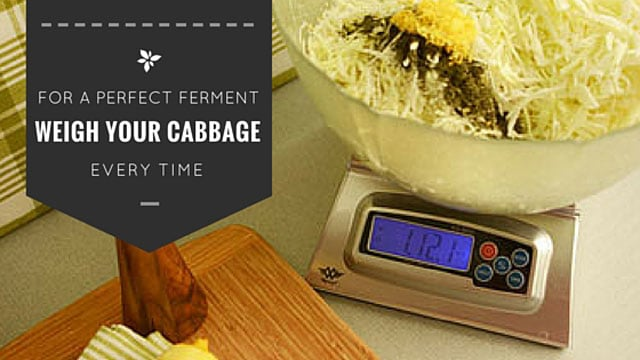 Weigh your vegetables and cabbage for a perfect ferment. | makesauerkraut.com