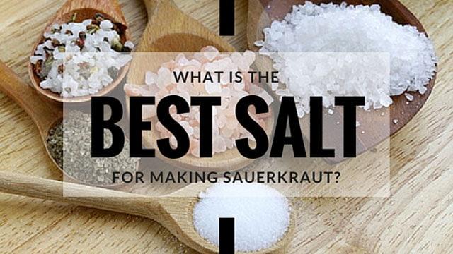 What is the best salt for sauerkraut? | makesauerkraut.com