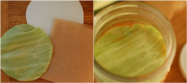 Tear cabbage leaf to size and place in jar for a floaties trap. | makesauerkraut.com