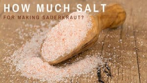 How much salt for making sauerkraut? | makesauerkraut.com