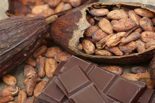 Chocolate benefits and ways to eat. |makesauerkraut.com