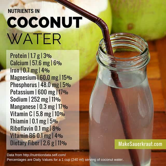There are a broad range of beneficial nutrients in coconut water. | makesauerkraut.com