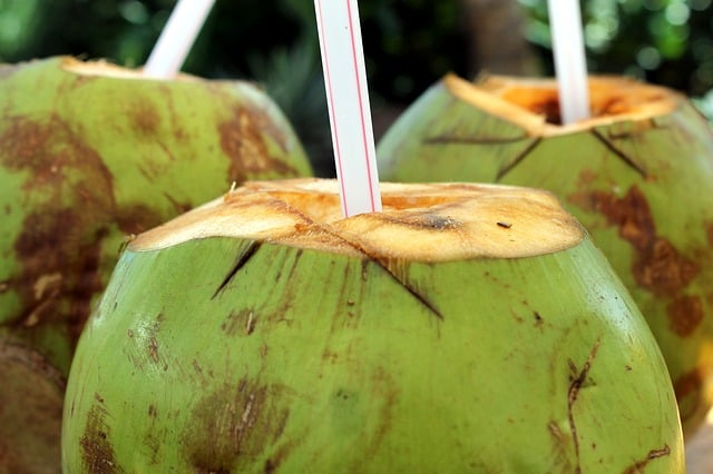 Coconut water straight from a green coconut. | makesauerkraut.com