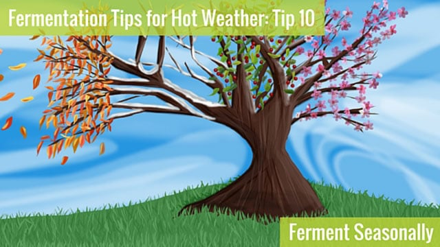 Fermentation Tips for Hot Weather - Ferment Seasonally. | makesauerkraut.com