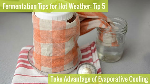 Fermentation Tip 5: Take Advantage of Evaporative Cooling. | makesauerkraut.com
