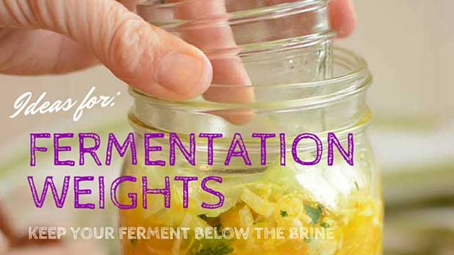 Fermentation weights to keep your ferment below the brine. | makesauerkraut.com
