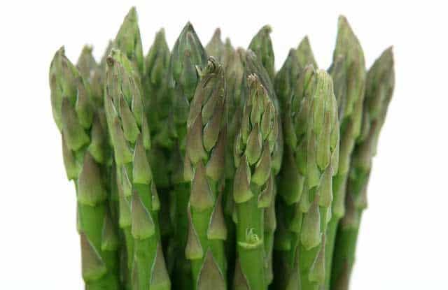 Bundle of asparagus.   MakeSauerkraut.com