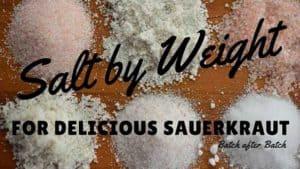 Salt by weight for perfect sauerkraut, every time. | makesauerkraut.com