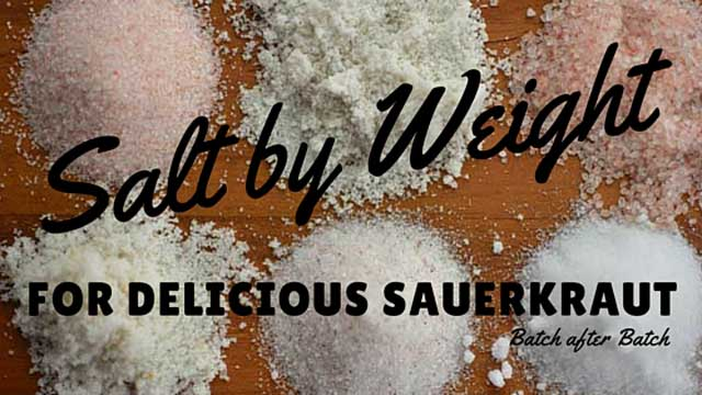 Salt by Weight for Delicious Sauerkraut    Batch after Batch