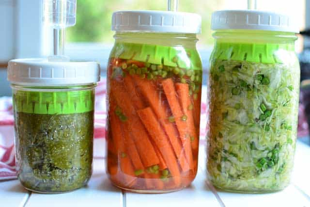 Three types of ferments tested with the Ultimate Pickle Jar. | makesauerkraut.com