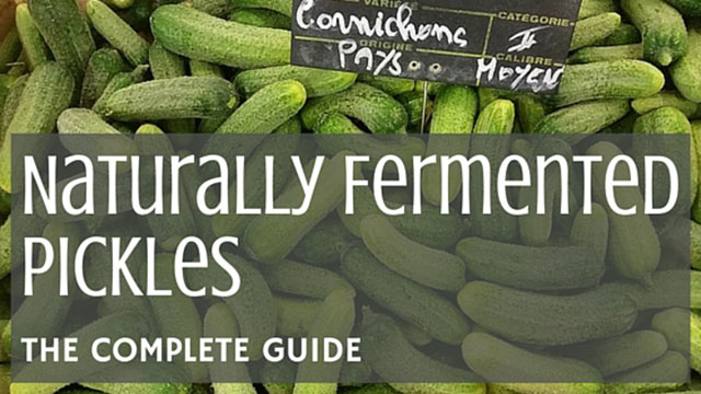 Fermented Pickles [The Complete Guide] | makesauerkraut.com