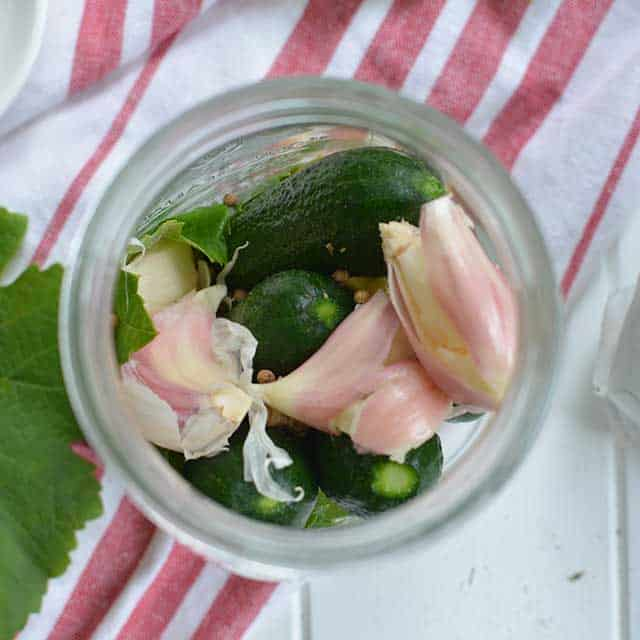 Fermented pickles recipe packing cucumbers into jar. | makesauerkraut.com