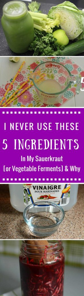 Ingredients I never use in my ferments and why. | makesauerkraut.com