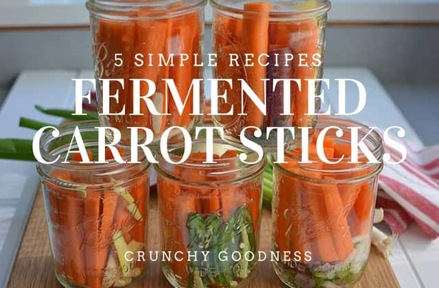 5 Simple Fermented Carrot Sticks Recipes. | makesauerkraut.com