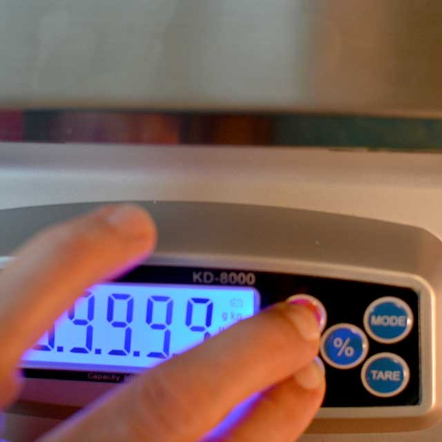 Fingers reaching to press buttons on the MyWeigh KD-8000 digital scale and the screen turning on. | MakeSauerkraut.com