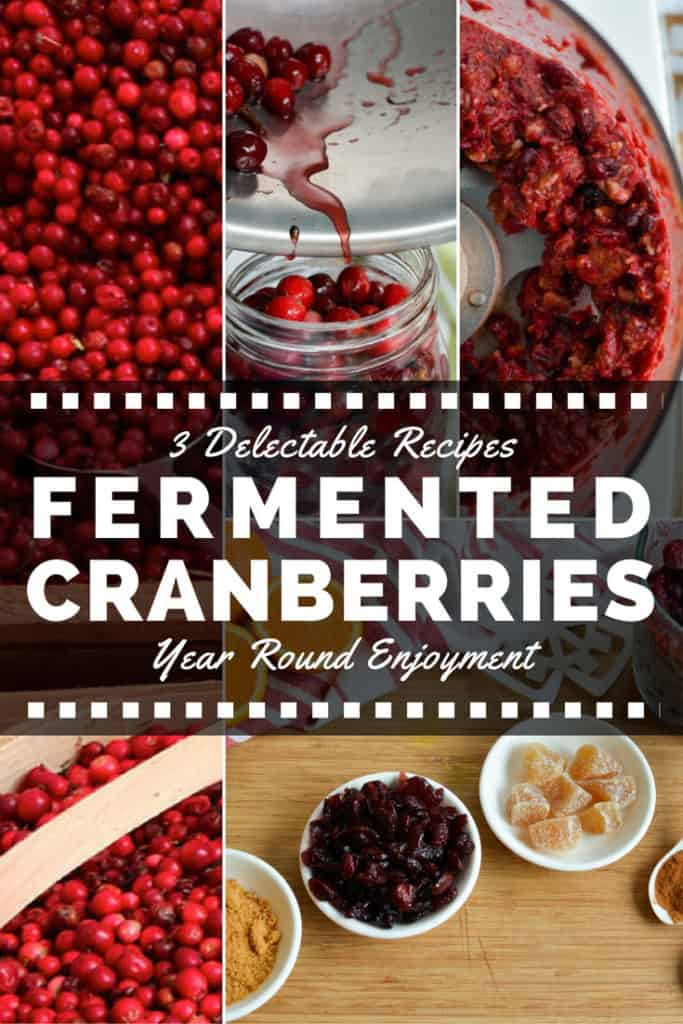 Fermented Cranberries. 3 Recipes to Enjoy Year Round. | makesauerkraut.com