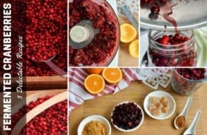 Fermented Cranberries Recipes for Year Round Enjoyment. | makesauerkraut.com