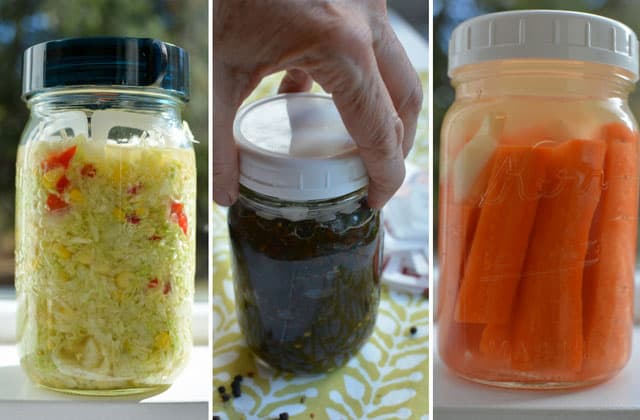 Using the ViscoDisc Canning Buddies to ferment sauerkraut, chutney and carrot sticks. | makesauerkraut.com