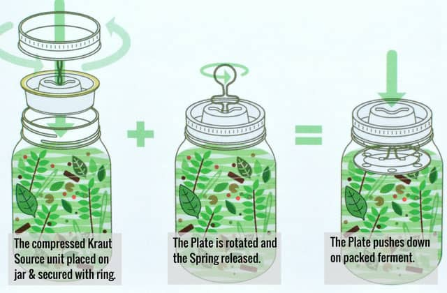 Using the Kraut Source fermentation lid. | makesauerkraut.com
