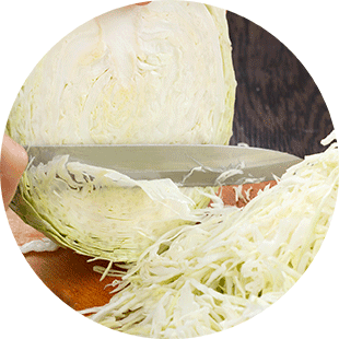 Slicing cabbage for making sauerkraut. | MakeSauerkraut.com