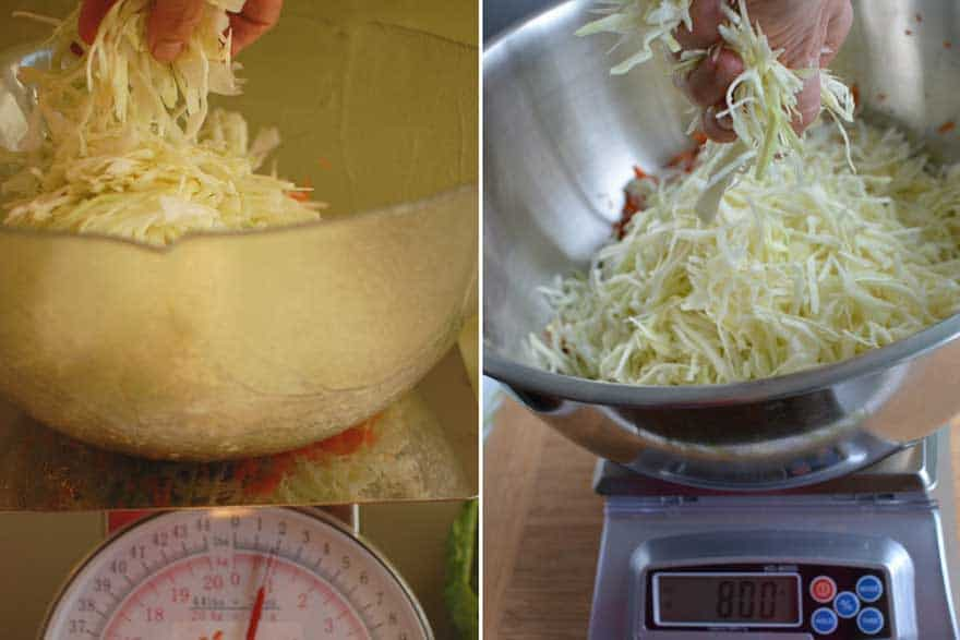 Add sliced cabbage to bowl until weight is 1 3/4 pounds for a manual scale or 800 grams for a digital scale. | MakeSauerkraut.com