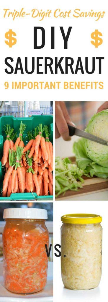 Cost of homemade vs. store bought sauerkraut. | makesauerkraut.com