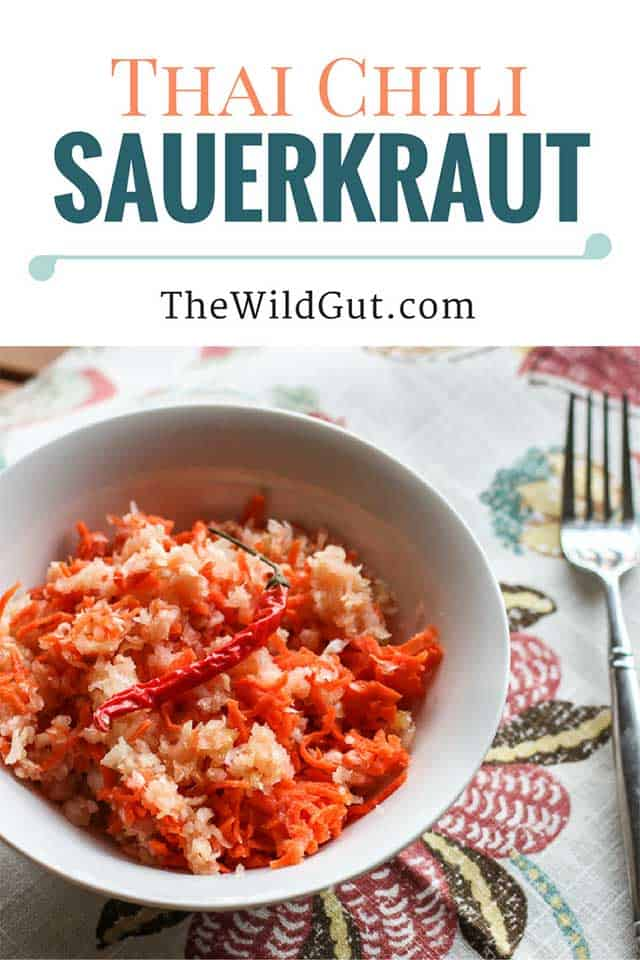 A Mouthwatering Collection of Sauerkraut Recipes from Around the Web. | makesauerkraut.com