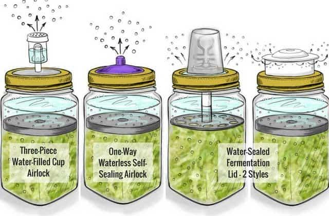 Fermentation lids with airlocks. | makesauerkraut.com