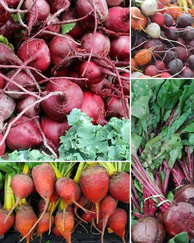 Fresh beets from the local farmer's market. | makesauerkraut.com