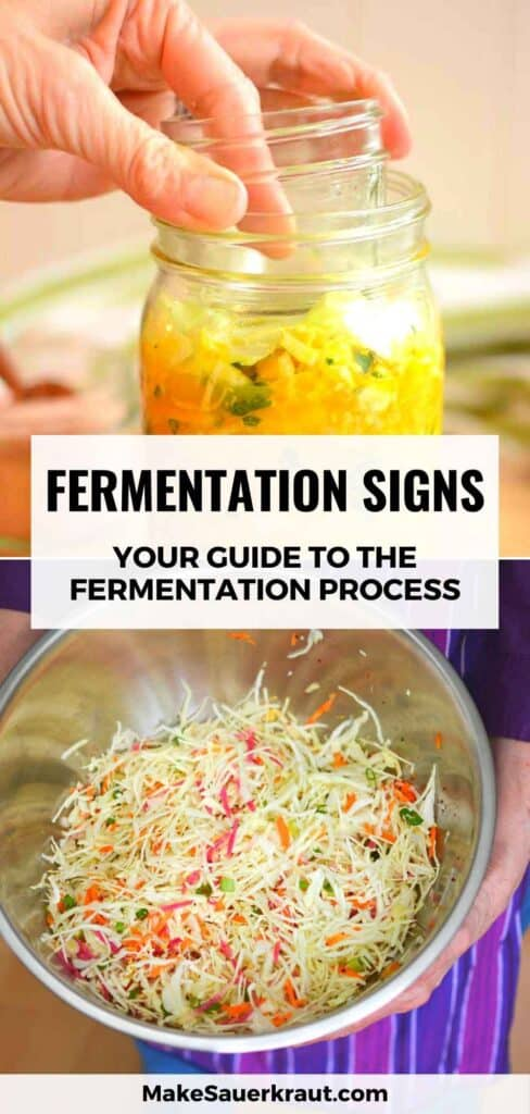 Fermentation Signs: Your Guide to the Fermentation Process