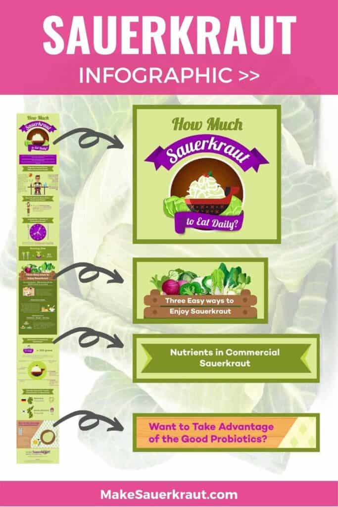 parts of the infographic on sauerkraut