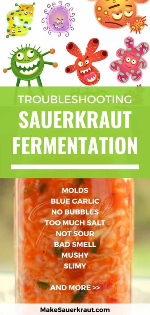 Troubleshooting sauerkraut fermentation: molds, blue garlic, no bubbles, too much salt, not sour, bad smell, mushy, slimy and more