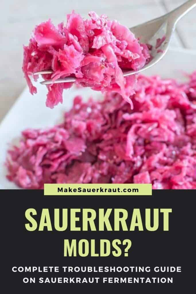 Forkful of sauerkraut from a plate, Sauerkraut molds? Complete Troubleshooting Guide on Sauerkraut Fermentation