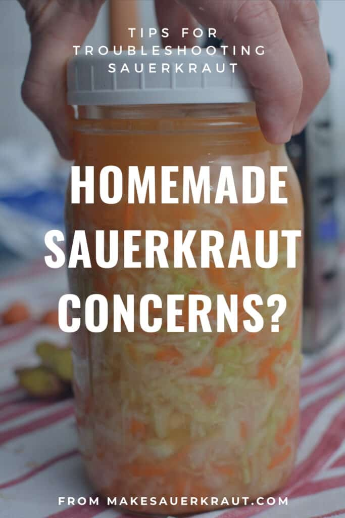 Guide for troubleshooting your homemade sauerkraut. } makesauerkraut.com