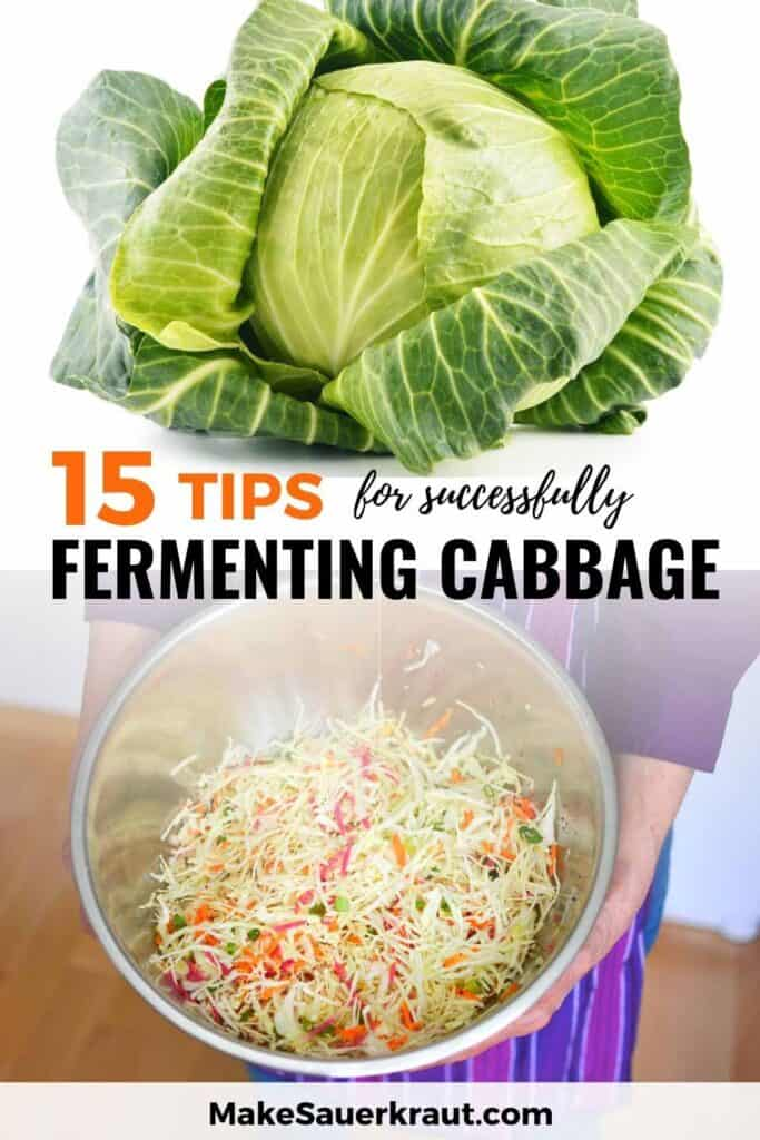 15 Expert Tips for successfully fermenting cabbage