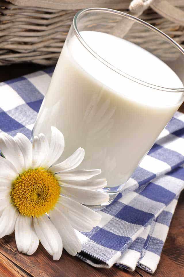 Is there dairy in sauerkraut? | makesauerkraut.com