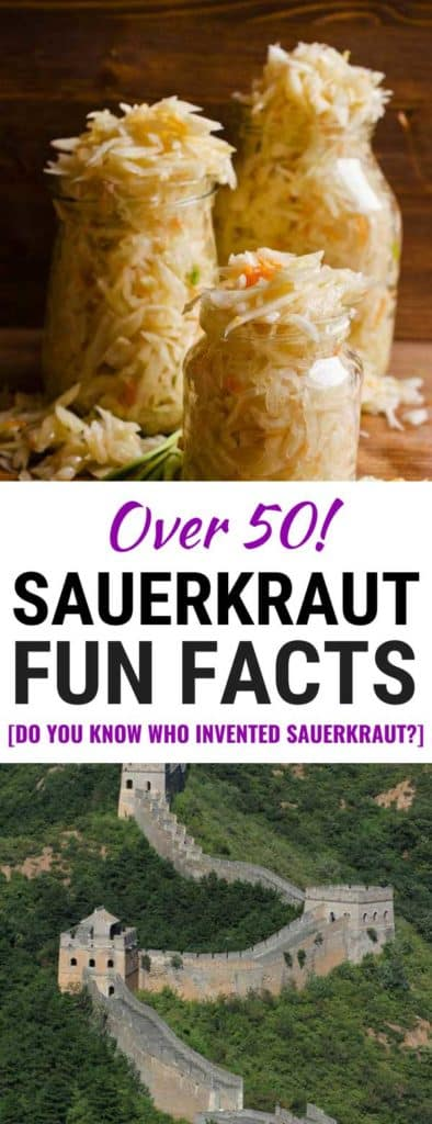 Sauerkraut Fun Facts: All about sauerkraut. - makesauerkraut.com