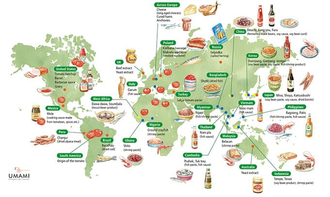Umami Information Center. Umami around the world. | makesauerkraut.com