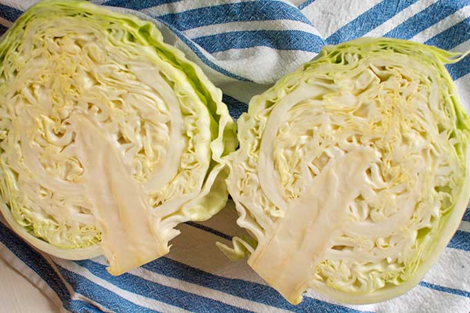 Slice cabbage into quarters and then slice. | MakeSauerkraut.com