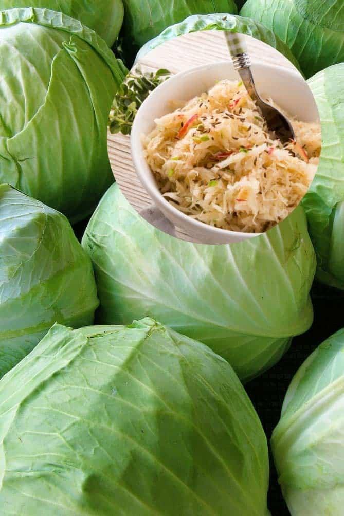 Group of green cabbage with inset of a bowl of sauerkraut. | MakeSauerkraut.com