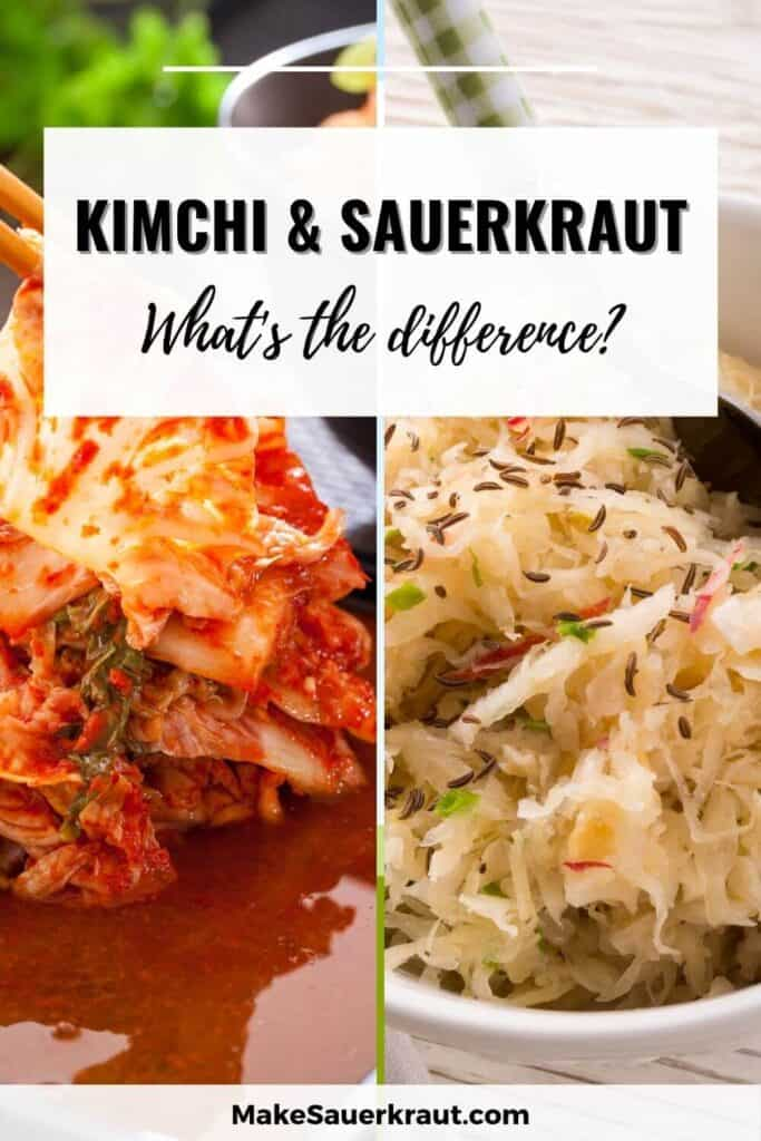 kimchi vs sauerkraut difference