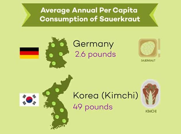 Short infographic on average annual per capita consumption of sauerkraut between Germany and Korea. | MakeSauerkraut.com