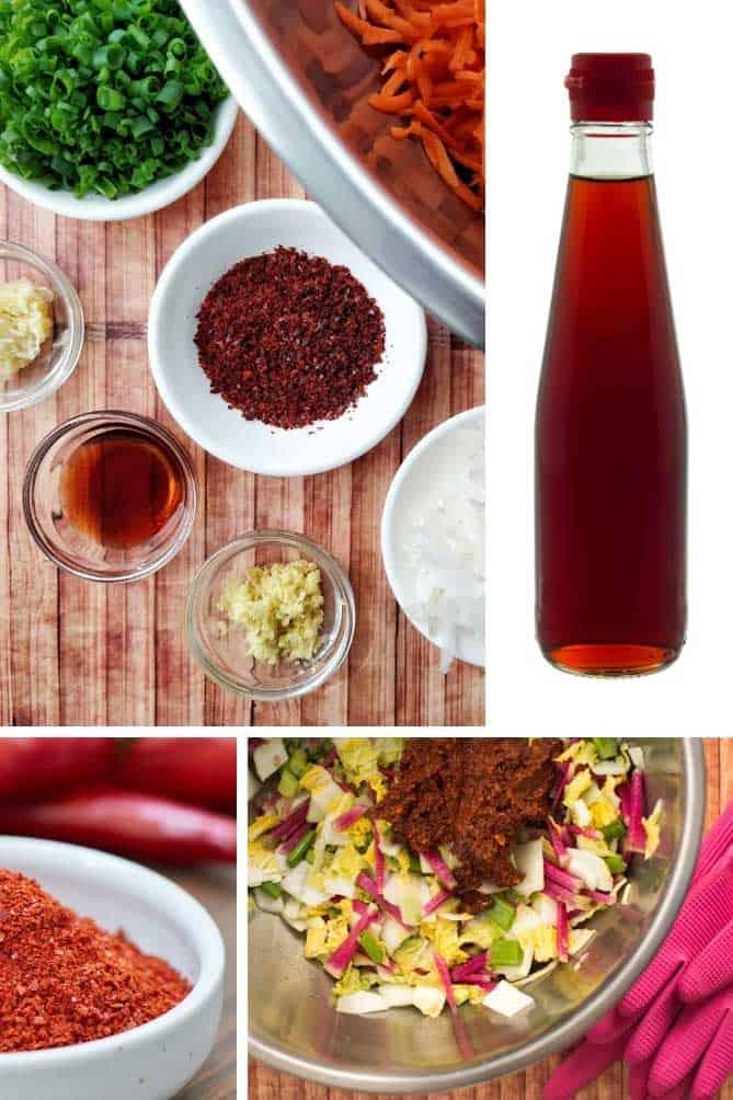 Inset pictures of typical kimchi ingredients: fish sauce, gochugaru, ginger, garlic. | MakeSauerkraut.com
