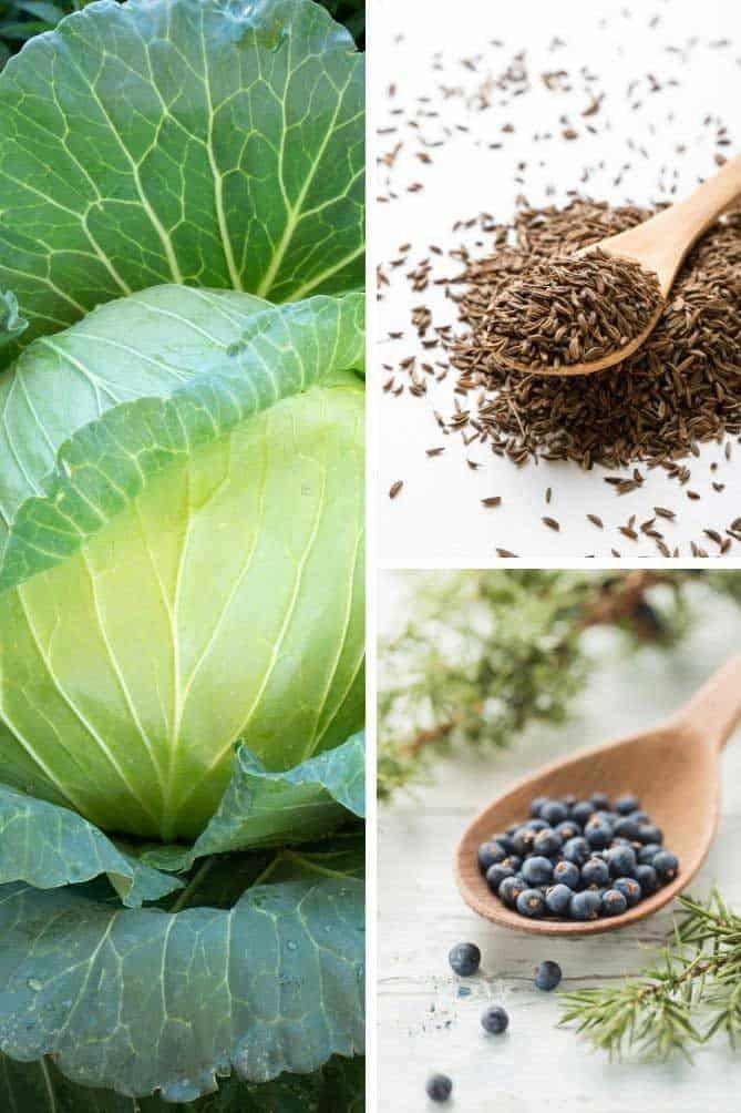Picture collection of typical sauerkraut ingredients: green cabbage, caraway seeds, juniper berries. | MakeSauerkraut.com